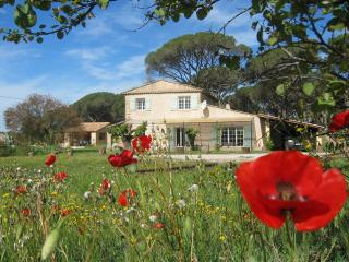 Plein Sud - Vidauban vacation rentals
