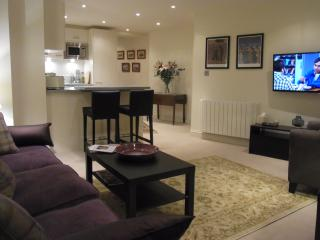 Nice 2 bedroom Condo in Shere - Shere vacation rentals