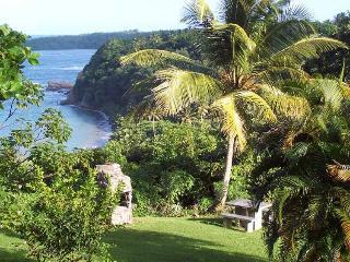 Sea Cliff Studio Cottage  #1 - Calibishie vacation rentals