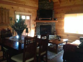Blue Ridge Parkway/Boone/Blowing Rock/W.Jefferson - West Jefferson vacation rentals