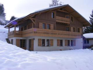 Cozy 2 bedroom Apartment in Saint Gervais les Bains with Internet Access - Saint Gervais les Bains vacation rentals