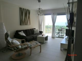 Bright 2 bedroom Tazacorte Condo with Parking - Tazacorte vacation rentals