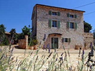 Villa Rosini - Novigrad vacation rentals