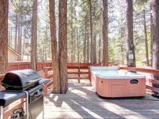 Pet Friendly South Lake Home Centrally Located ~ RA697 - South Lake Tahoe vacation rentals