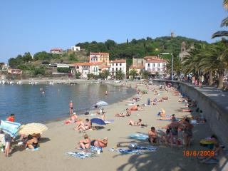 2 bedroom Condo with Internet Access in Collioure - Collioure vacation rentals