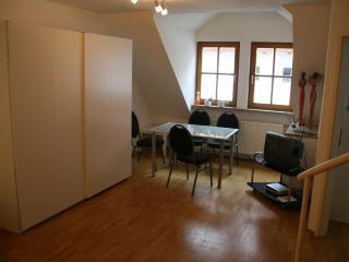 Cozy 2 bedroom Condo in Nuremberg - Nuremberg vacation rentals
