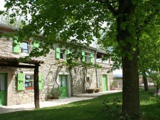 Villa Elena - Buzet vacation rentals