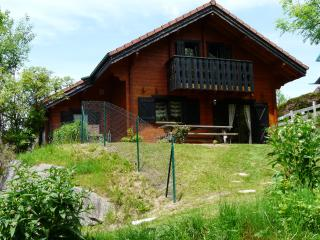 Chalet VIVALDI - Gerardmer vacation rentals