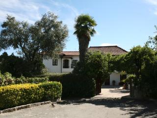 Cozy 2 bedroom Porto House with Towels Provided - Porto vacation rentals