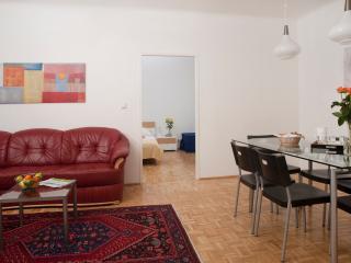 Spacious Apartment ApF21/18 - Vienna vacation rentals