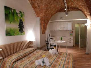 LE VOLTE - City Center Romantic Studio Wifi&AC - Lucca vacation rentals