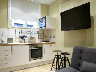 Spacious 4 bedroom flat, 2 minutes from Trafalgar Square - London vacation rentals
