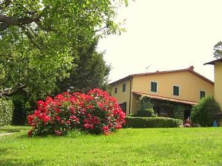 Appartamento Italo C - Lamporecchio vacation rentals