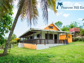 Private Home on 2 Fruited Acres w/ Beautiful Views - Negril vacation rentals