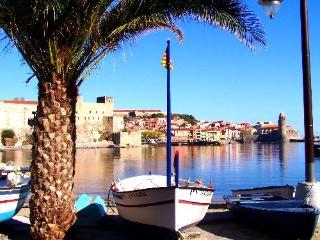 L'aquarelle 3 - Collioure vacation rentals
