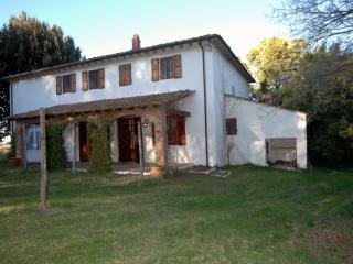 Bright 4 bedroom Farmhouse Barn in Collesalvetti - Collesalvetti vacation rentals