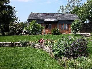 Bright Cottage with Washing Machine and Television - Buckland Monachorum vacation rentals