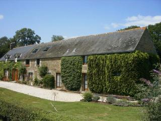 Beautiful Gite with Internet Access and Satellite Or Cable TV - La Ferte Mace vacation rentals