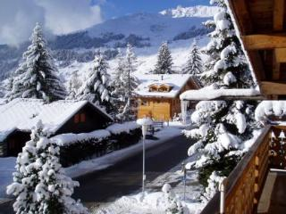 2 bedroom Condo with Internet Access in Verbier - Verbier vacation rentals
