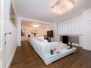 5* LUX. LARGE PENTHOUSE STYLE - London vacation rentals