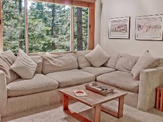 Northstar Ski Trail one bdrm w/loft, slps 8, wlk to Vil - Northstar vacation rentals