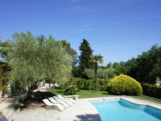 Experience Cote d'Azur- Villa Valbonne with Pool and Fireplace - Pegomas vacation rentals