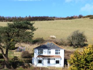 Beautiful 4 bedroom House in Woolacombe - Woolacombe vacation rentals