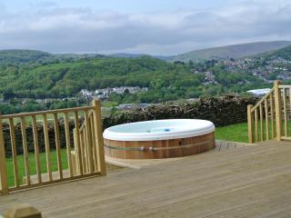 Cilhendre Fawr Farm Cottages - Pontardawe vacation rentals