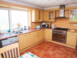 Gower Edge, spacious, comfortable and dog friendly - Dunvant vacation rentals