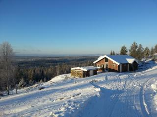Cozy Chalet with Internet Access and Television - Oslo vacation rentals