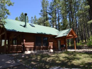 Comfortable 1 bedroom Cabin in Durango with Deck - Durango vacation rentals