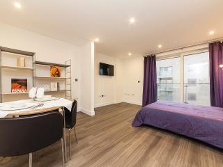 27 Watson House - Cambridge vacation rentals