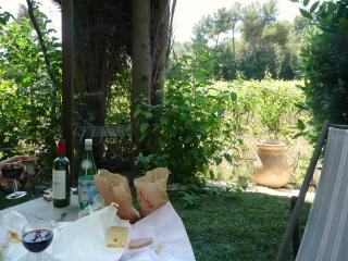 Perfect Condo with Internet Access and Parking - Santa Caterina dello Ionio vacation rentals