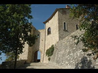 Extraordinary Tower in the Tuscan hills with pool, - Sansepolcro vacation rentals