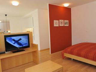 Central Apartment Bor TourAs - Ljubljana vacation rentals