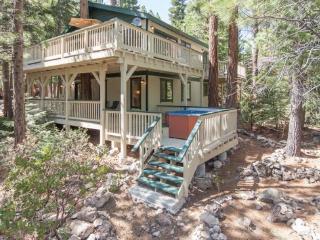 Forest Retreat Tahoe Rental - Dog Friendly,Hot Tub - Northstar vacation rentals