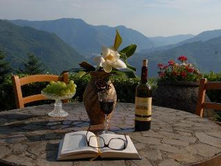 """Villa Donato """"Gaia"""" - Experience Tuscany as a local - Bagni Di Lucca vacation rentals"""