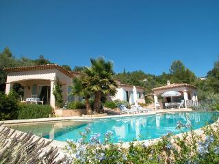 Villa in Montauroux, Provence, France - Montauroux vacation rentals
