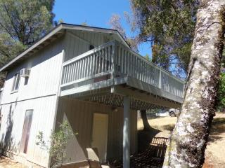 Deer Heaven Cottage - Oakhurst vacation rentals