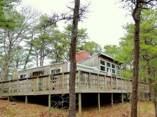 NICE 4 BD CONTEMPORARY - Wellfleet vacation rentals