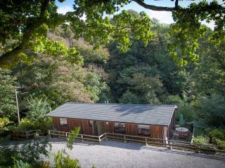 Bright 3 bedroom Lodge in Slapton - Slapton vacation rentals