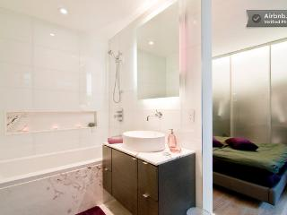 Luxuries DownTown Bachelor Pad - Vancouver vacation rentals