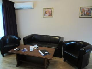 Deluxe Two bedroom apartment on Denkoglu 2 str - Sofia vacation rentals