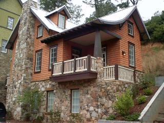 Luxury Ski Retreat -  Spectacular Long Range Views - Blue Ridge Mountains vacation rentals