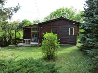 Cozy 3 bedroom Leanyfalu Cabin with Internet Access - Leanyfalu vacation rentals