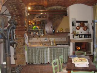 Particular ancient apartment in the blacksmith's workshop - Castagneto Carducci vacation rentals