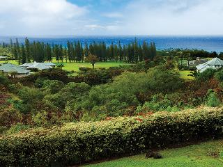PANORAMIC VIEWS in PINEAPPLE HILL - 4 Bedroom / 4.5 Bath - Kapalua vacation rentals