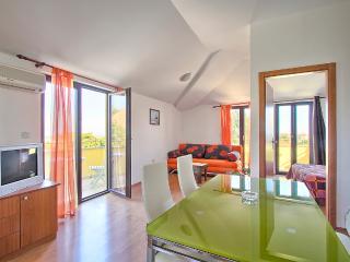 Spacious apartment with sea view - Premantura vacation rentals