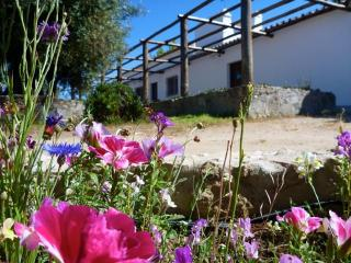 Nice Cottage with Deck and Internet Access - Évora vacation rentals