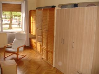 Parkside flat in Central Buda - Budapest & Central Danube Region vacation rentals